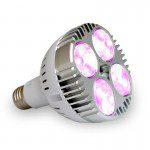 LED PAR30 E27 30W PLANT GROW