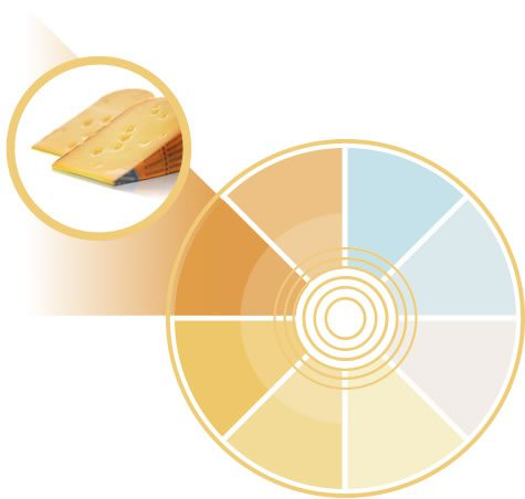 Tonalidad amarilla que refuerza el color blanco y fresco de los quesos
